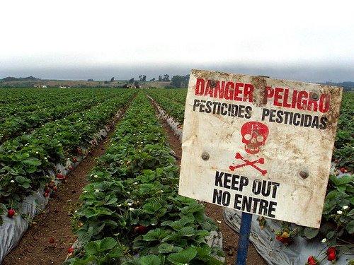 danger_pesticides.jpg