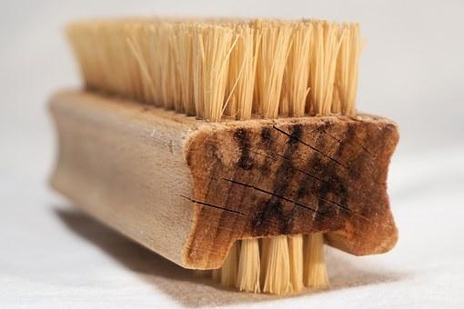brush-1165256__340