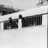 (FILES) This picture taken on June 16, 1964 shows eight men, among them anti-apartheid leader and African National Congress (ANC) member Nelson Mandela, sentenced to life imprisonment in the Rivonia trial leaving the Palace of Justice in Pretoria with their fists raised in defiance through the barred windows of the prison car. The eight men were accused of conspiracy, sabotage and treason. AFP PHOTO / STRINGER